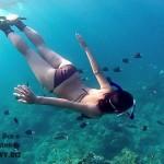 snorkeling-maldivy