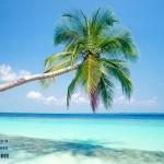 maldivy-plyazh-1