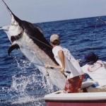 maldivy-rybalka