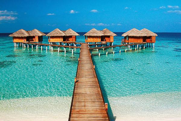 Отдых на Адду и Ари атоллах, Мальдивы